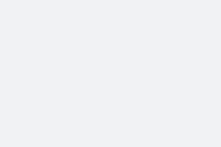 Neptune Convertible Art Lens System - Nikon F Silver